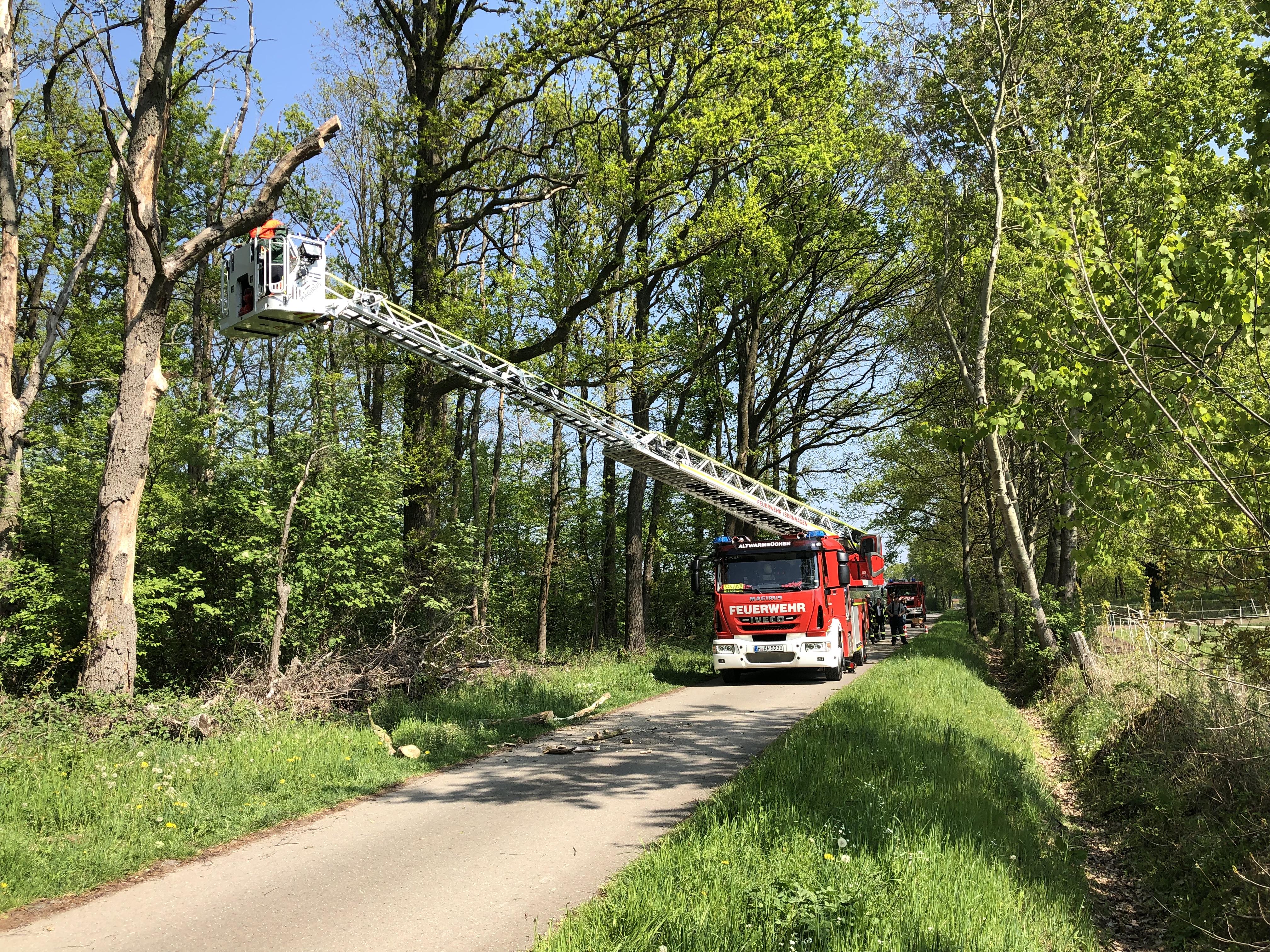 Ast droht zu fallen - Feuerwehr Altwarmbüchen